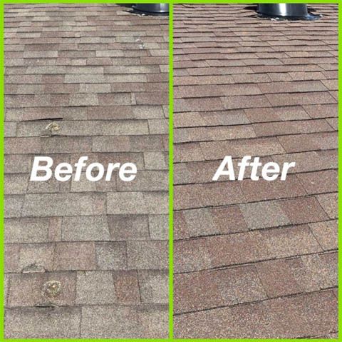 Roof Repair Vs Replacement Legacy Roofing